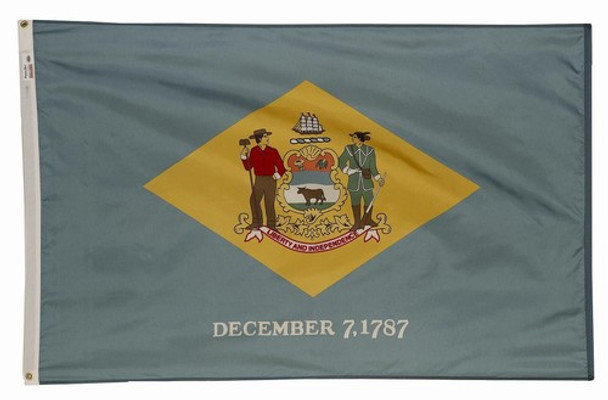 Delaware State Flag 5x8 Feet Spectramax Nylon by Valley Forge Flag 58232080