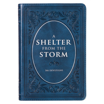 A Shelter from the Storm - Large Print Edition