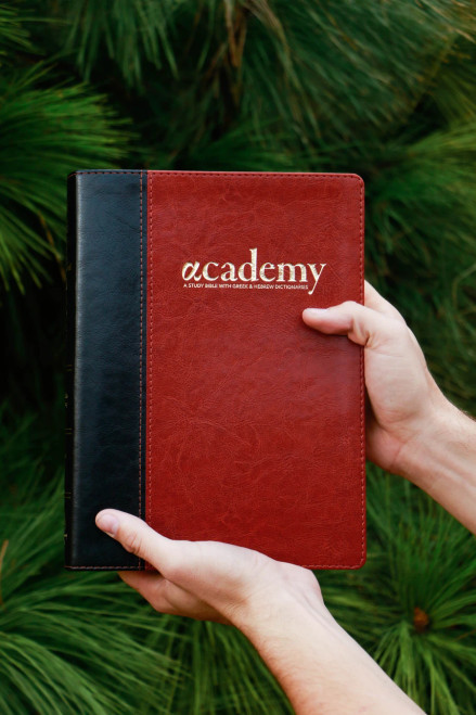 The Academy Study Bible - Chestnut Edition