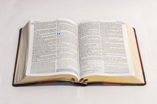 The Mission Study Bible with EGW Commentary (Chestnut Cover)