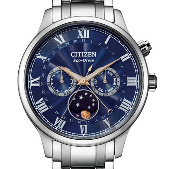AP1050-81L Citizen