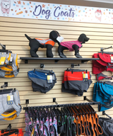 How to Measure your Dog For a Dog Coat