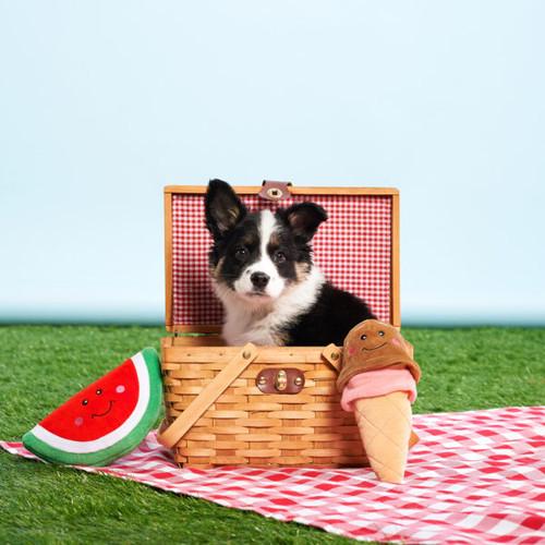 NomNomz Watermelon Dog Toy