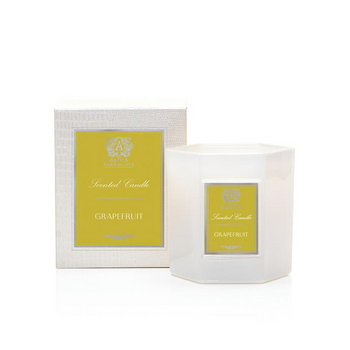 Antica Farmacista 9oz Candle - Grapefruit