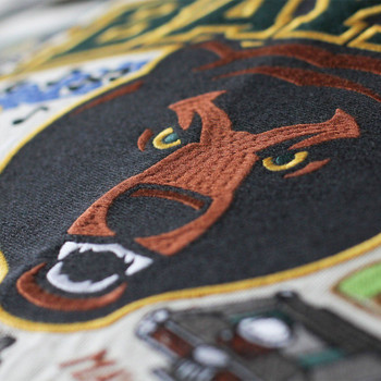 Catstudio Baylor University Collegiate Embroidered Pillow