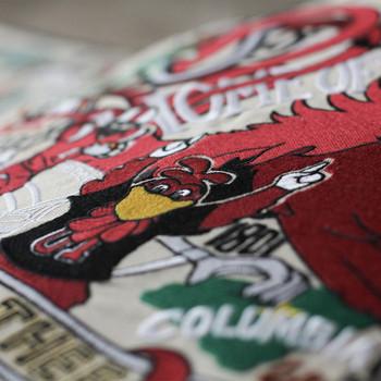Catstudio South Carolina University of Collegiate Embroidered Pillow