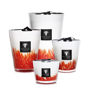 Baobab Collection Feathers Maasai Candle