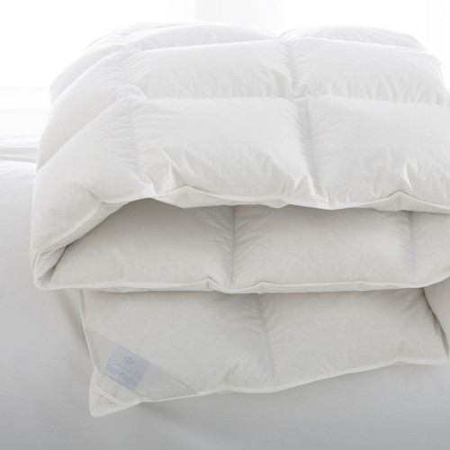 Scandia Home Copenhagen Down Comforter