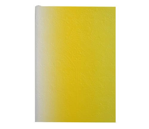 Christian Lacroix Paseo Ombre Neon Yellow Notebook - Small