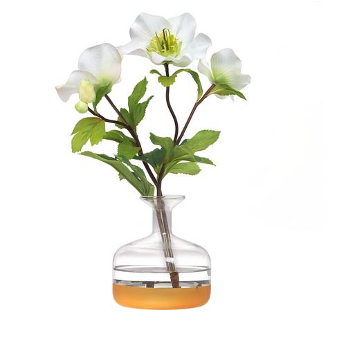 Diane James Hellebore Blossom in Bud Vase