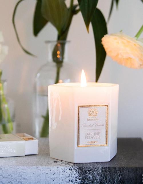 Antica Farmacista 9oz Candle - Daphne Flower