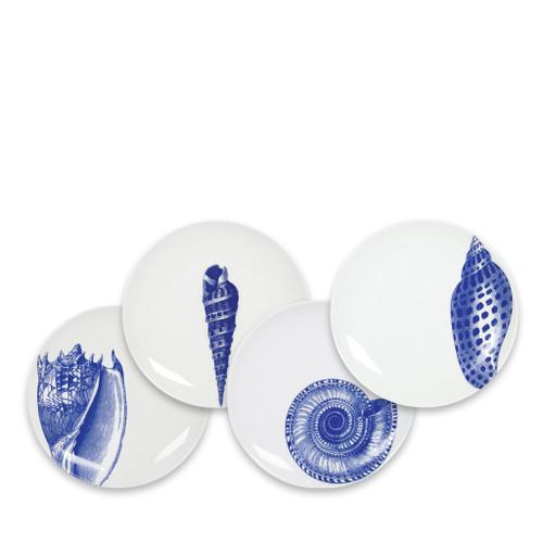 Caskata Shells Blue Canapes Mixed Boxed - Set of 4