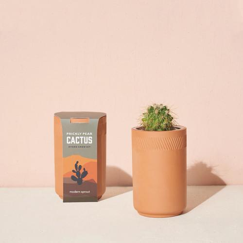 Modern Sprout Terracotta Kit