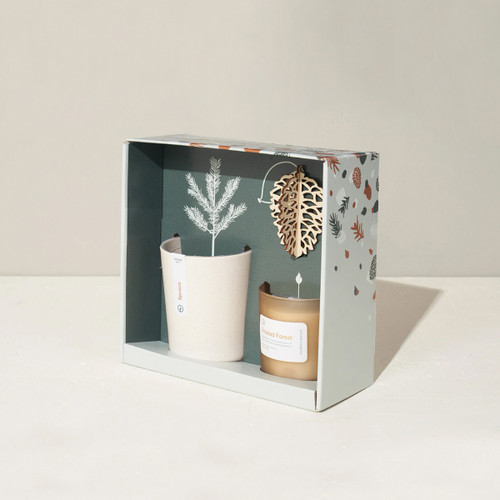 Modern Sprout Gift Box Collection, Gather