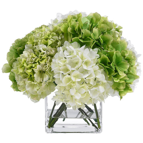 Diane James Blooms Green/Cream Hydrangea Bouquet In Glass Cube