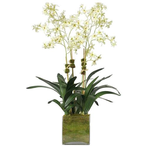 Diane James Cream Oncidium Orchid 4 Stems In Glass Cube