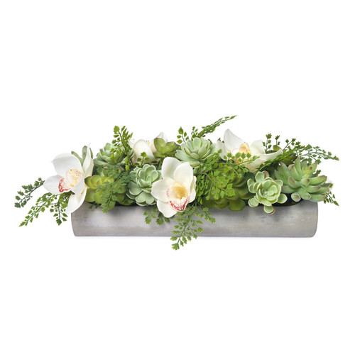 Diane James Echeveria And Orchids In Cement Planter