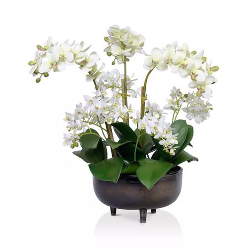 Diane James Mixed Phalaenopsis Orchids In Black Metal Bowl