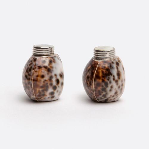 Blue Pheasant Nora Tiger Cowrie Salt & Pepper Shakers - Set of 4