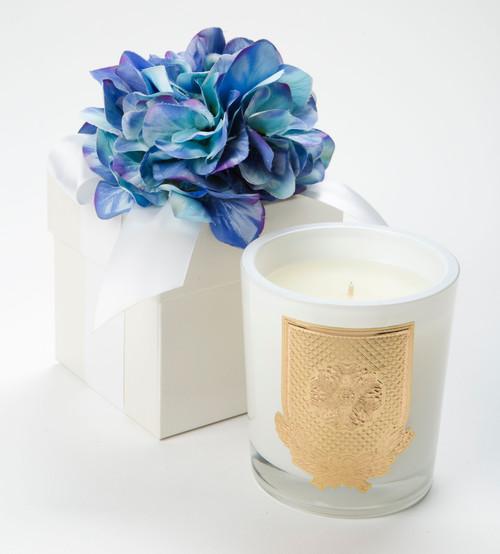 Lux Fragrances Blue Hydrangea 14oz Flower Box Candle