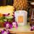 Antica Farmacista 9oz Candle - Hana Lei
