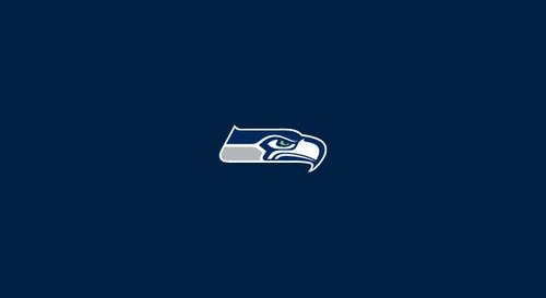 Seattle Seahawks Pool Table Felt