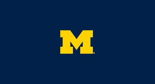 University of Michigan Pool Table Felt