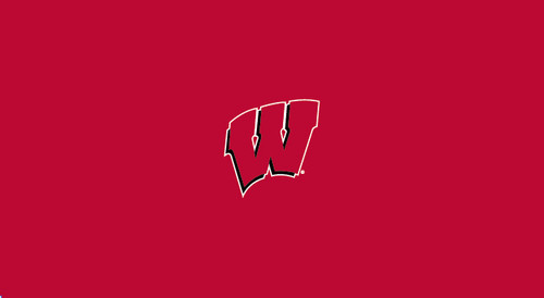 University of Wisconsin Pool Table Felt