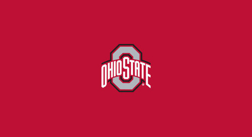 Ohio State University Pool Table Felt