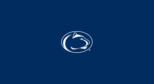 Penn State Pool Table Felt