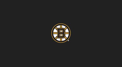 Boston Bruins Pool Table Felt
