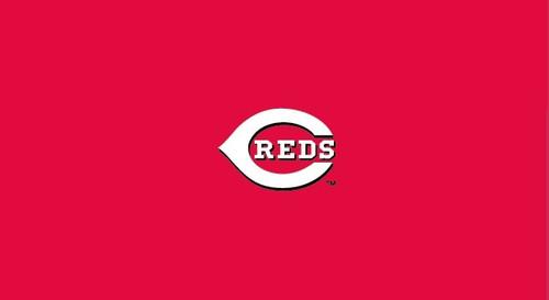 Cincinnati Reds Pool Table Felt