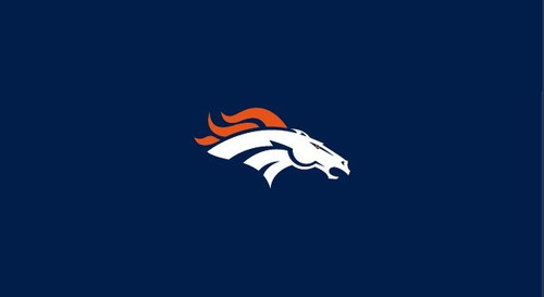 Denver Broncos Pool Table Felt