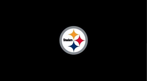 Pittsburgh Steelers Pool Table Felt