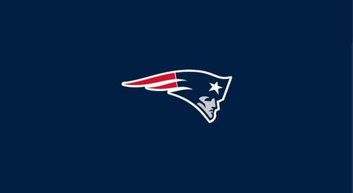 New England Patriots Pool Table Felt