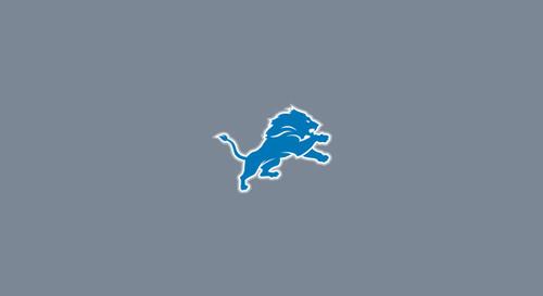 Detroit Lions Pool Table Felt