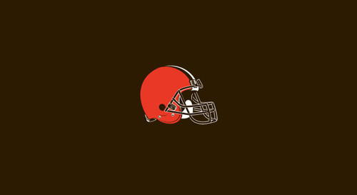 Cleveland Browns Pool Table Felt