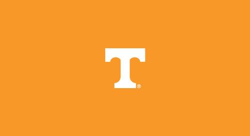 University of Tennessee Pool Table Felt