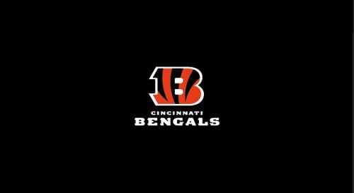 Cincinnati Bengals Pool Table Felt
