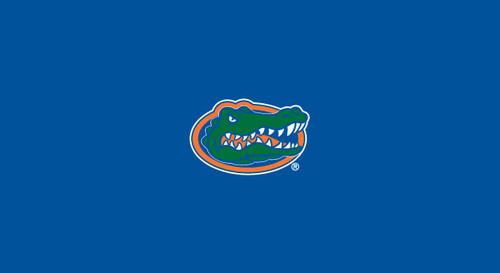 University of Florida Pool Table Felt