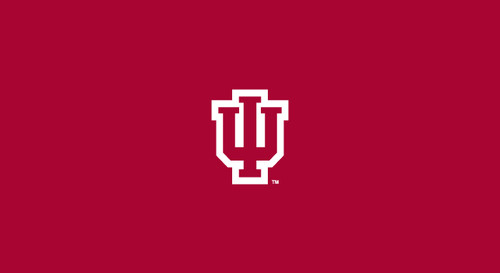 University of Indiana Pool Table Felt