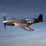 """IN-01 USAAF Insignia as shown on P-51-C Mustang """"Lope's Hope."""""""