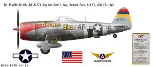 "P-47D Thunderbolt ""Big Ass Bird II"" Decorative Vinyl Decal"