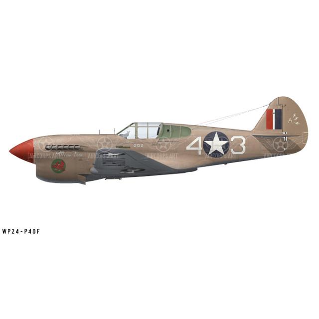 "P-40F Warhawk ""Miss Fury"" Decorative Vinyl Decal"