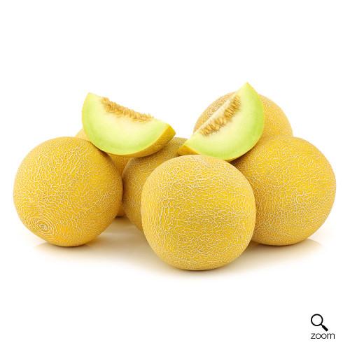Melon (Galia)