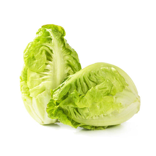 Baby Gem Lettuce (Twin Pack)