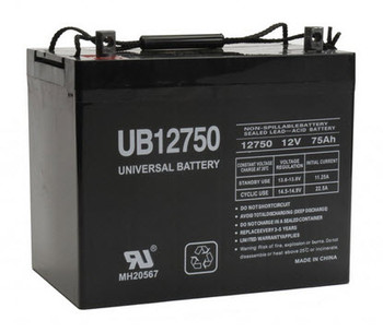 Group 24 Deep Cycle AGM Marine Battery - 12V 75Ah - Nut & Bot Terminal| Battery Specialist Canada
