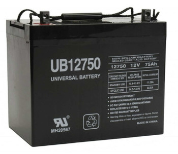 Burcam Sump Pump Backup AGM Battery Replacement - 12V 75Ah| Battery Specialist Canada
