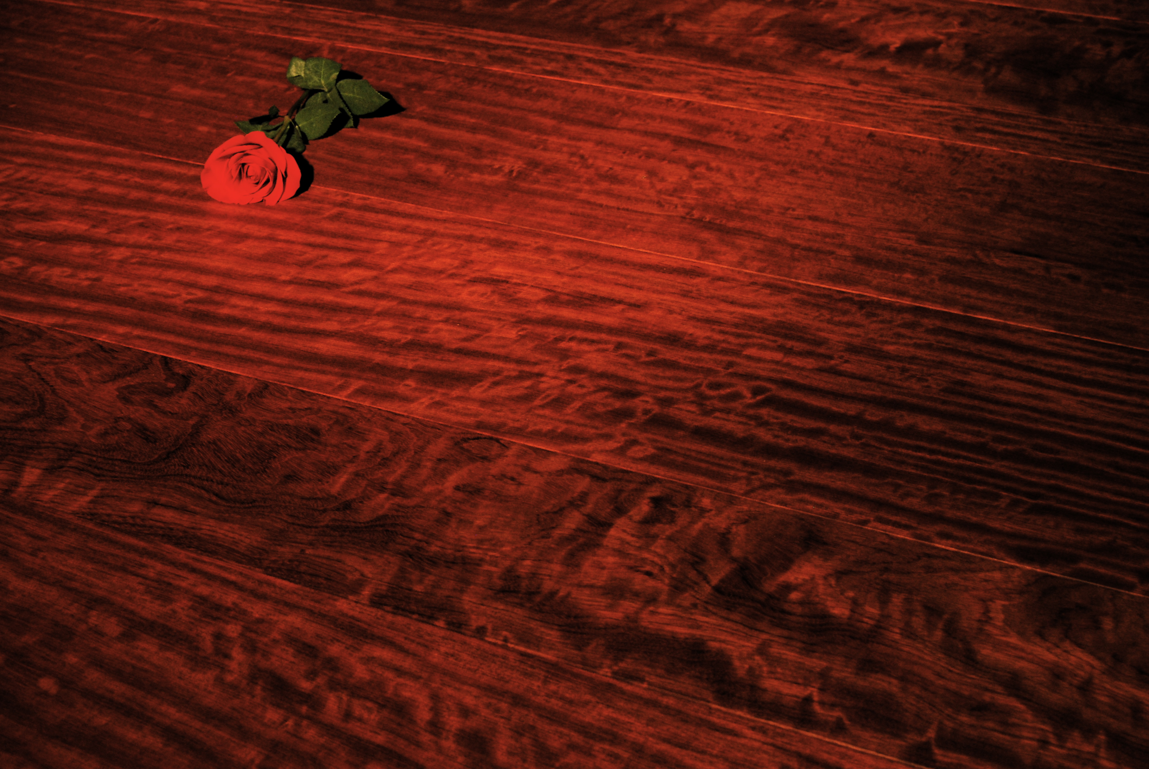 realwideplankflooring.com+bubinga-floor-finished-with-odie-s.jpg