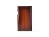 Dignis Artisan Series Case for Astell & Kern SE100